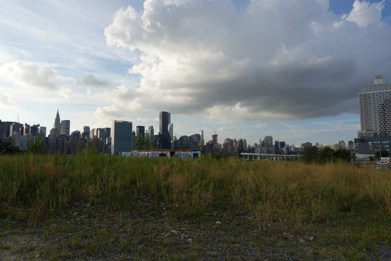 It's amazing the absolutely drastic dichotomy between the Manhattan skyline and the undeveloped wild terrain of Hunters Point.