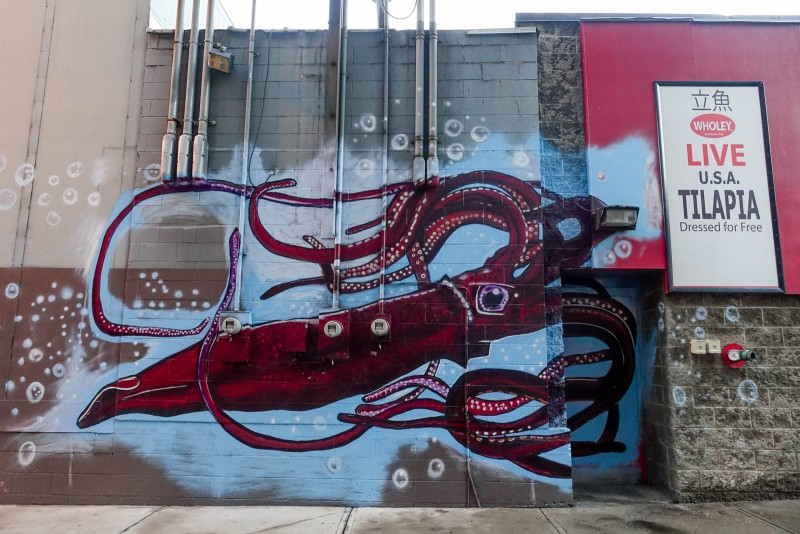 Beautiful squid art adorns a local fish market - brilliant!